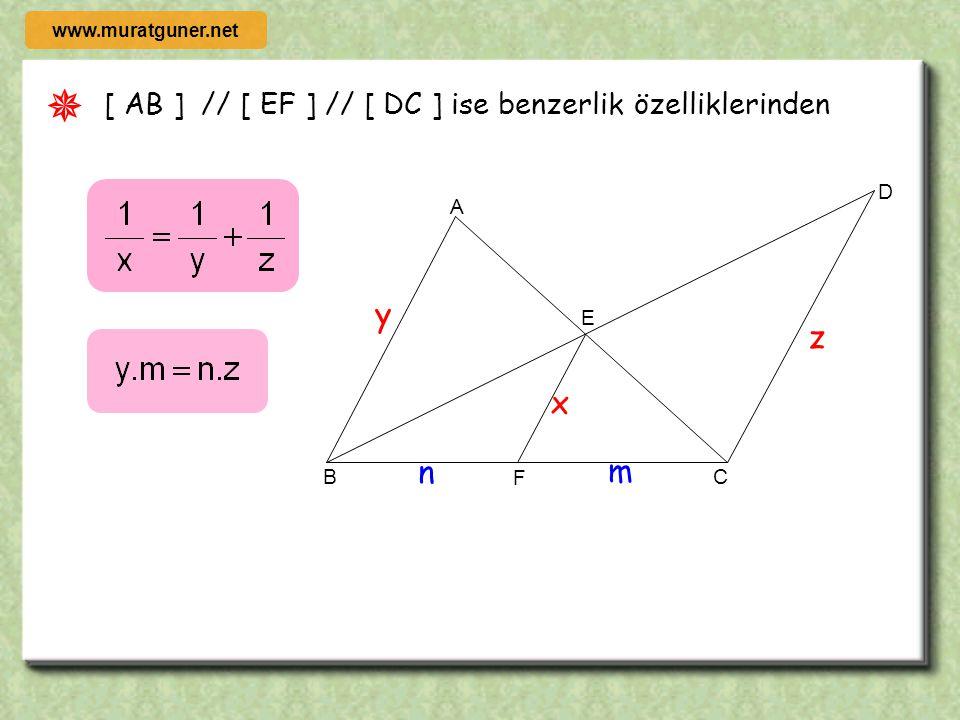  y z x n m [ AB ] // [ EF ] // [ DC ] ise benzerlik özelliklerinden C